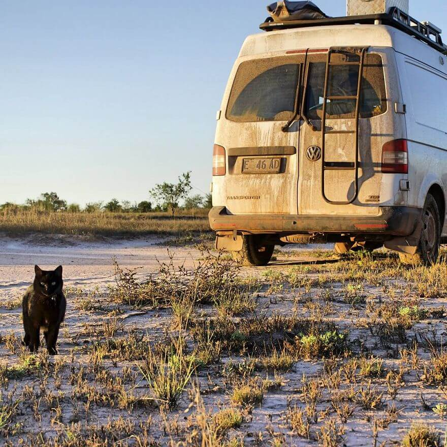 rich east traveling australia with cat 13 (1)