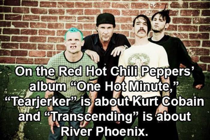 music facts 14 (1)