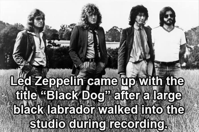 rock and roll facts 3 (1)