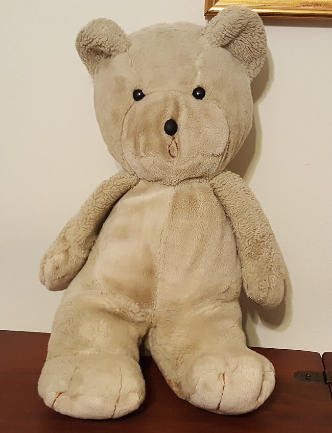 teddy bear pictures 12 (2)