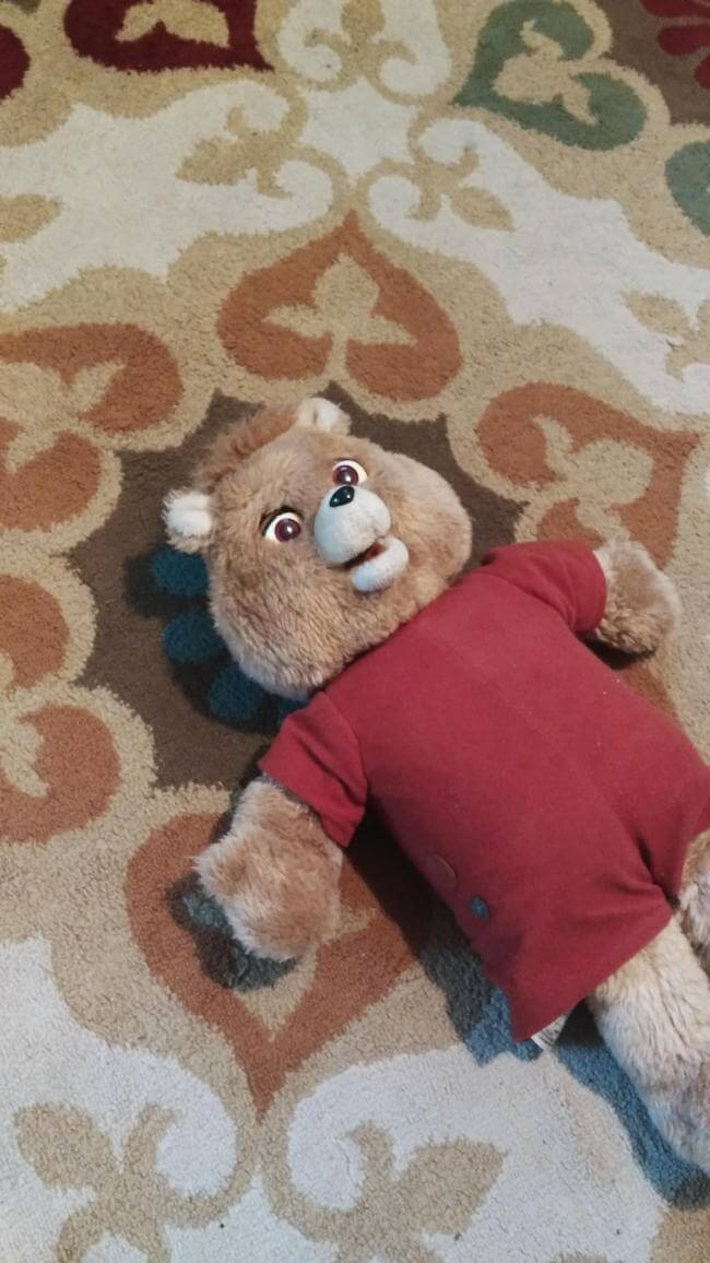 cute teddy bears 16 (1)