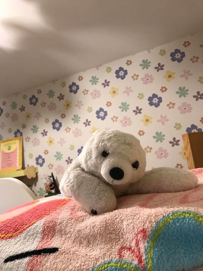 teddy bears 20 (1)