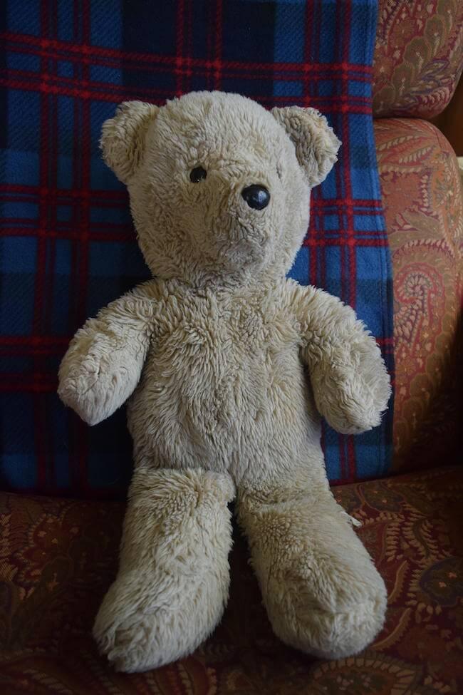 how to put dildo in teddy bear