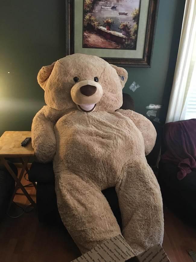 teddy bear pics 6 (2)