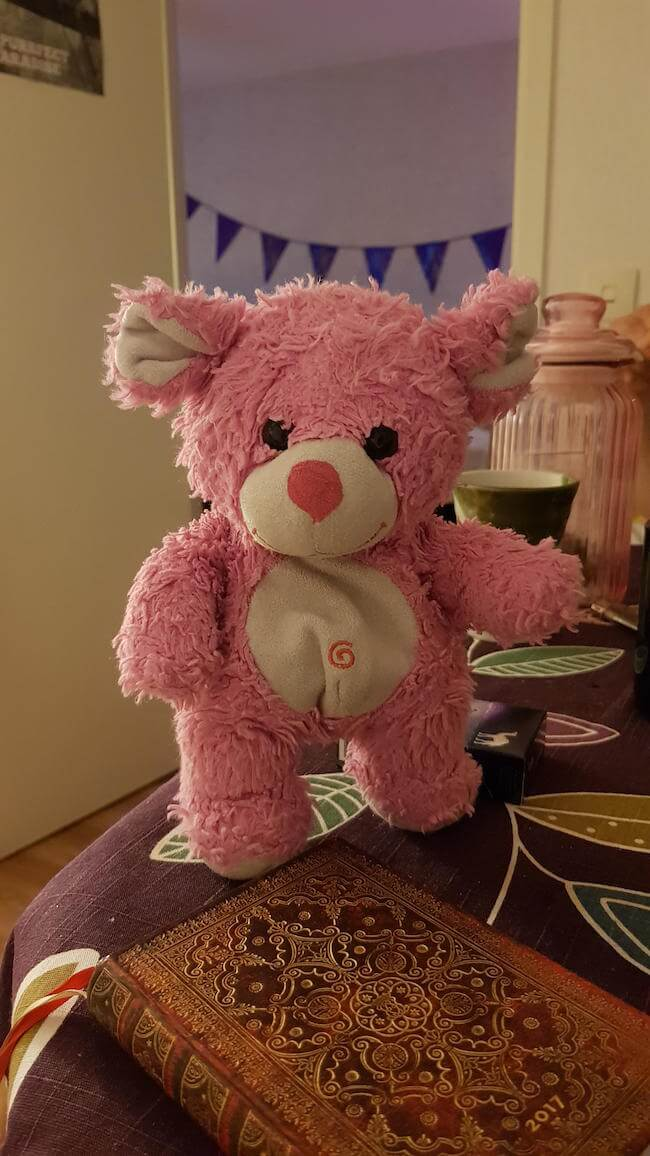teddy bear pics 7 (2)