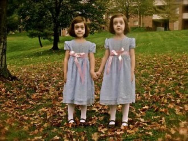 twins halloween costume 8 (1)