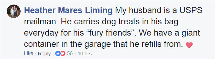 ups driver dog meeting group 25 (1)