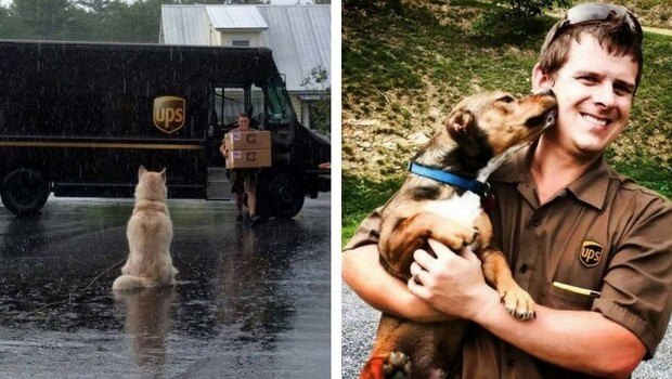 ups facebook group about dogs feat (1)