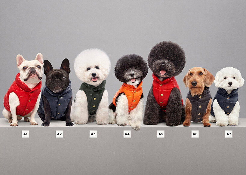 Luxury Puffer Jackets for Dogs by Moncler 1 (1)