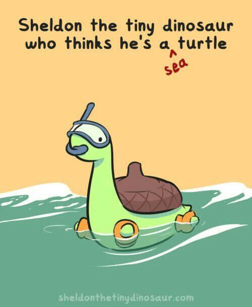marine tortoise Memes 24 (1)