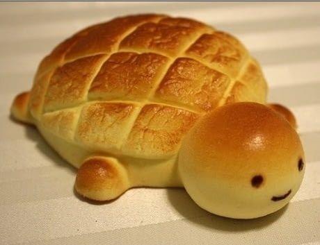 marine tortoise Memes 27 (1)