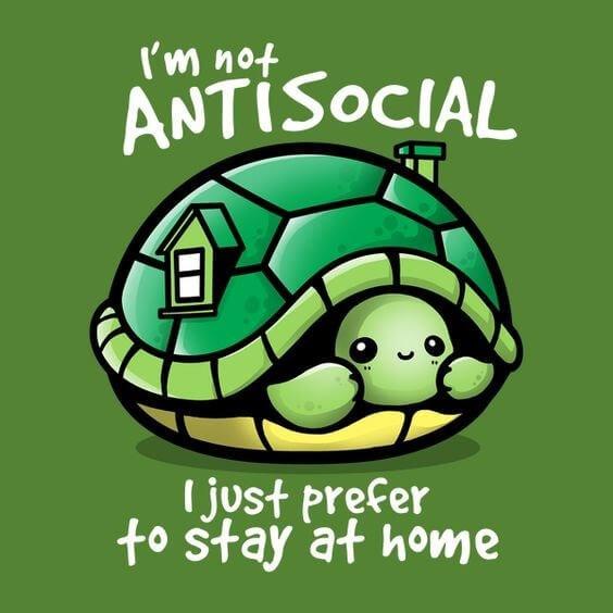 Turtle puns 9 (1)