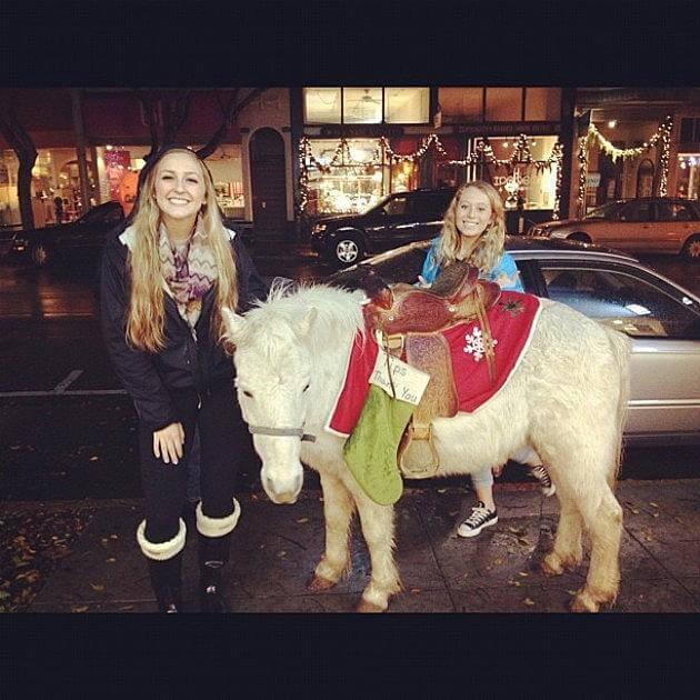 holiday horses 12 (1)