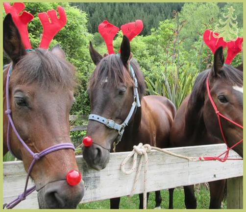 christmas horses 18 (1)