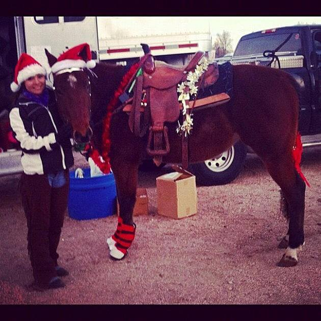 christmas decorated horses 4 (1)