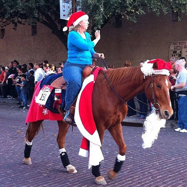 christmas decorated horses 5 (1)