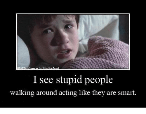 I see stupid people meme