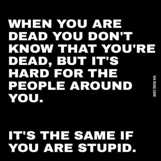 I see stupid people meme