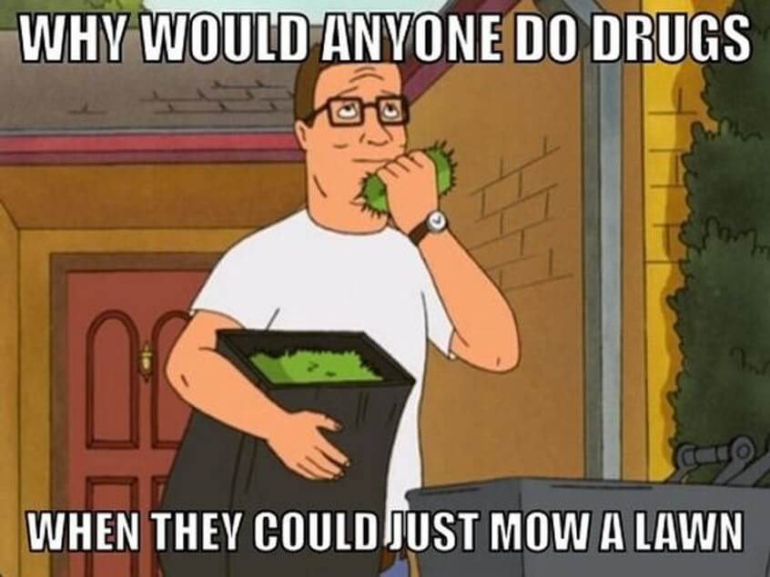 king of the hill memes 2 (1)