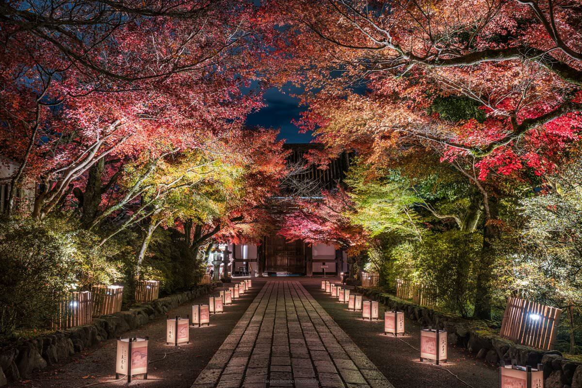 kyoto in fall photos 14 (1)