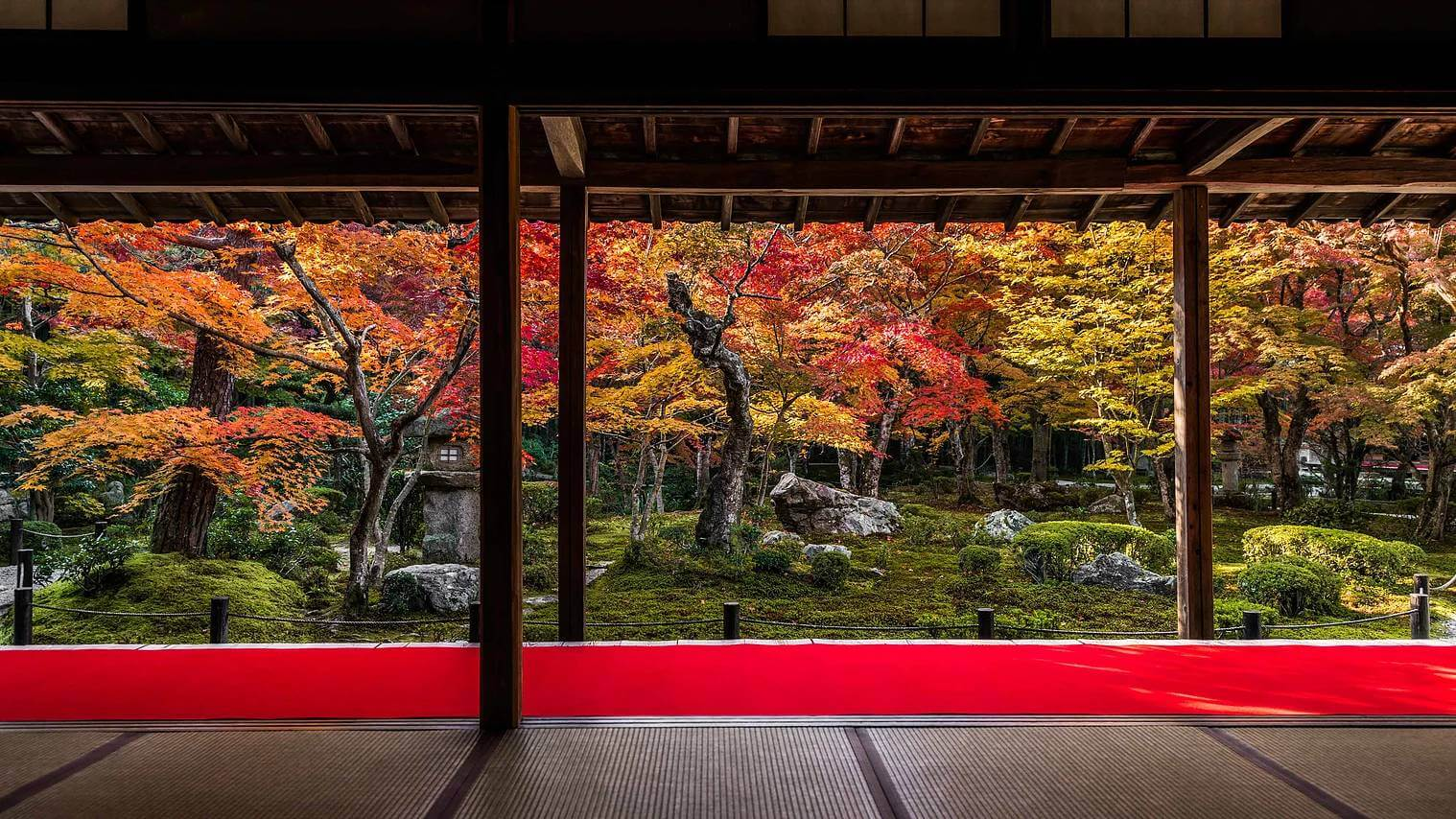 kyoto in fall photos 5 (1)