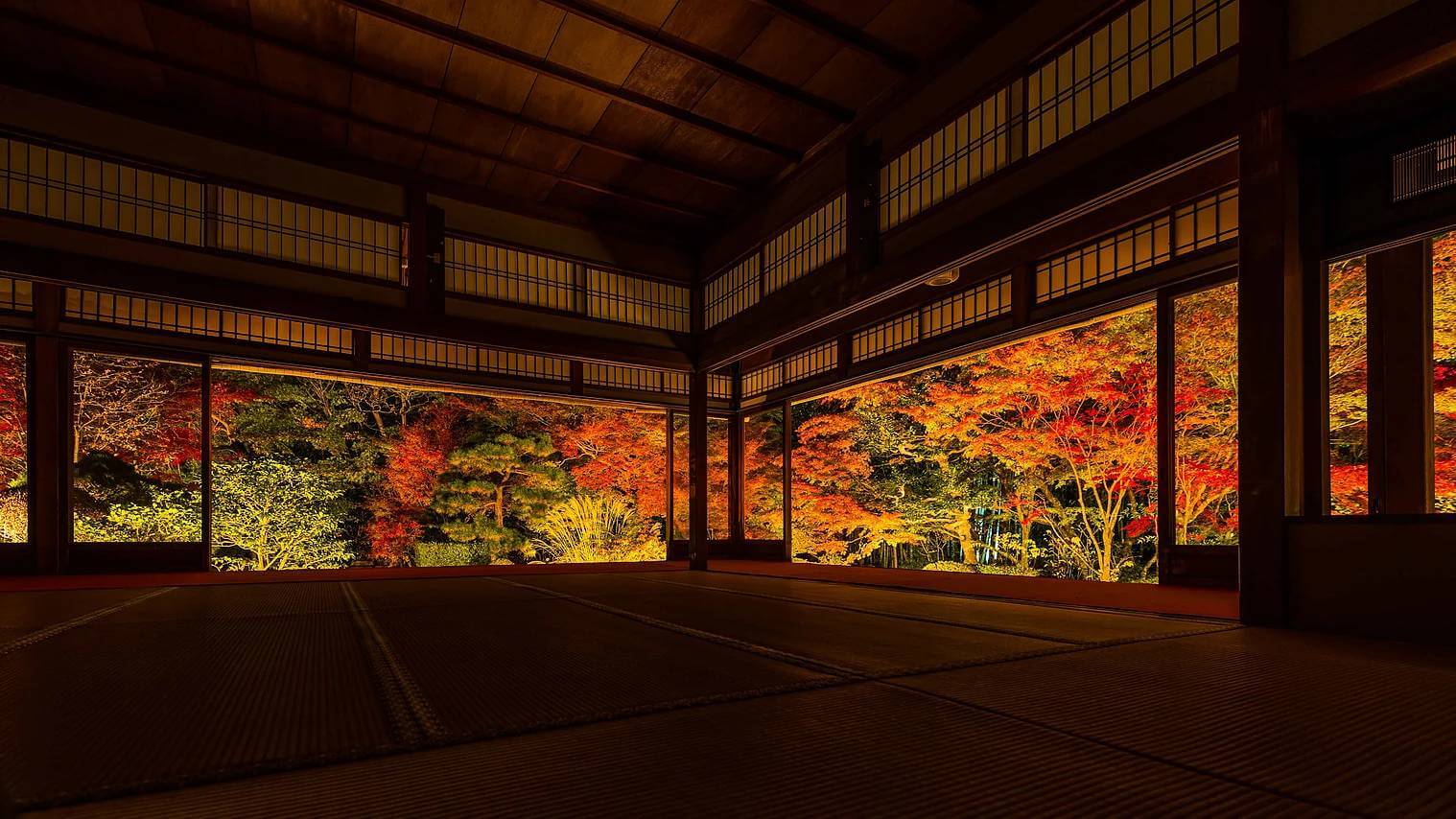 kyoto in fall photos 7 (1)