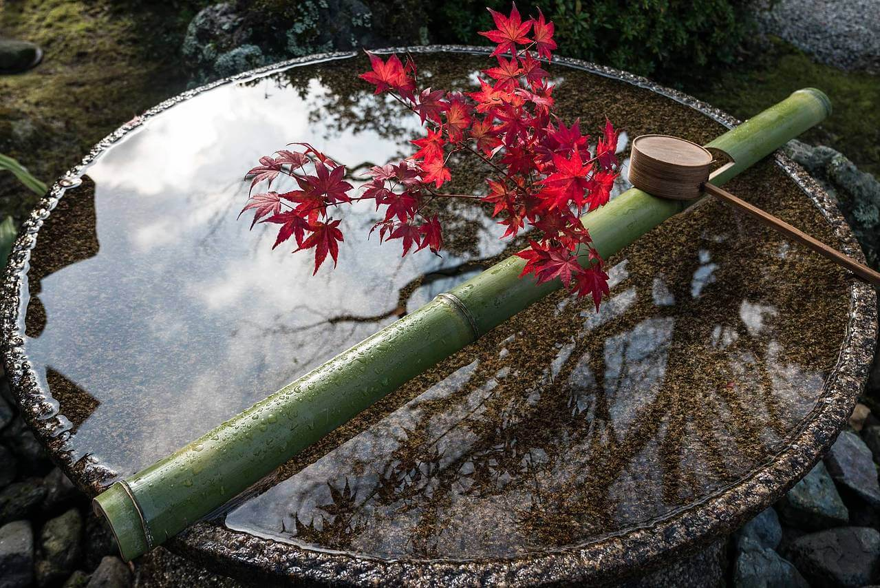 kyoto in fall photos 8 (1)