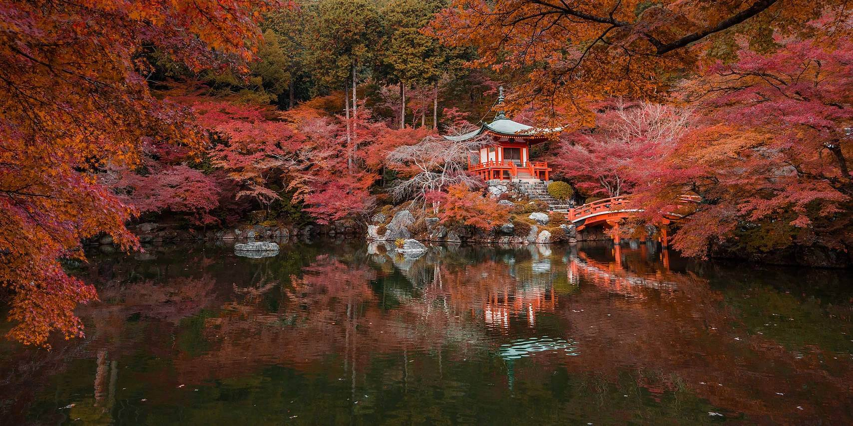 kyoto in fall photos 9 (1)