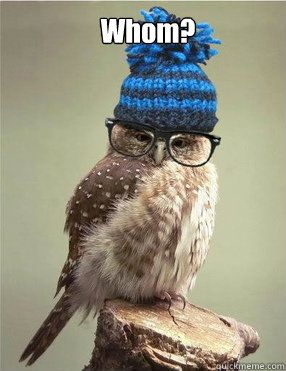 owl images 18 (1)