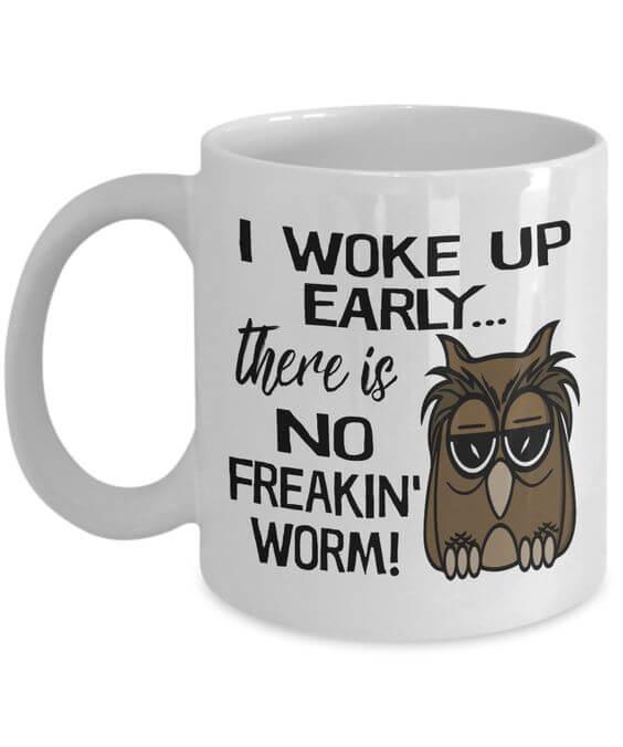 funny owls 28 (1)
