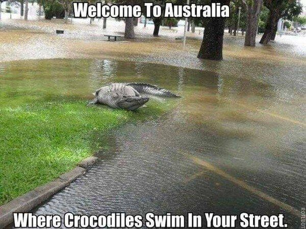 reasons not to visit australia 2 (1)