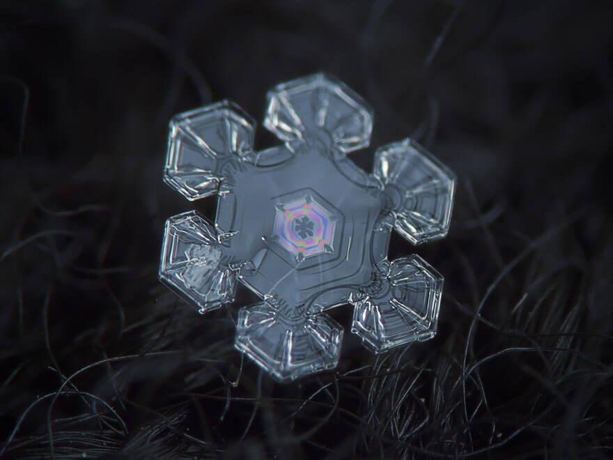 alexey kljatov snowflakes photography 12 (1)