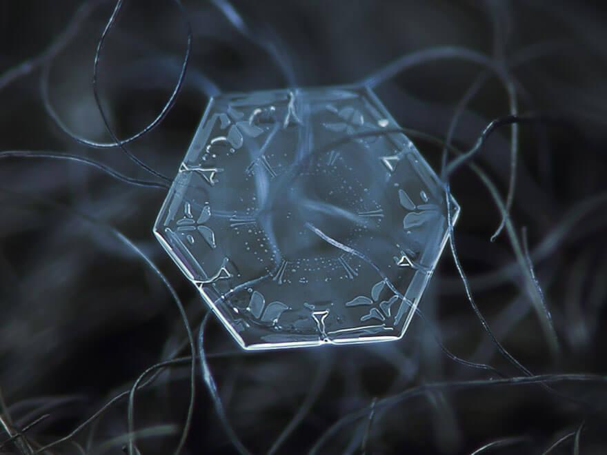 snowflakes macro photography 13 (1)