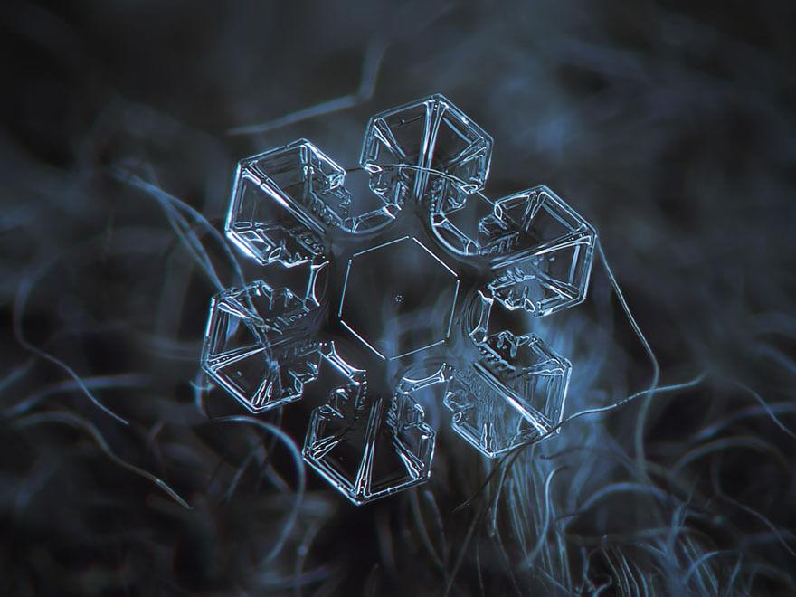 snowflakes macro photography 2 (1)