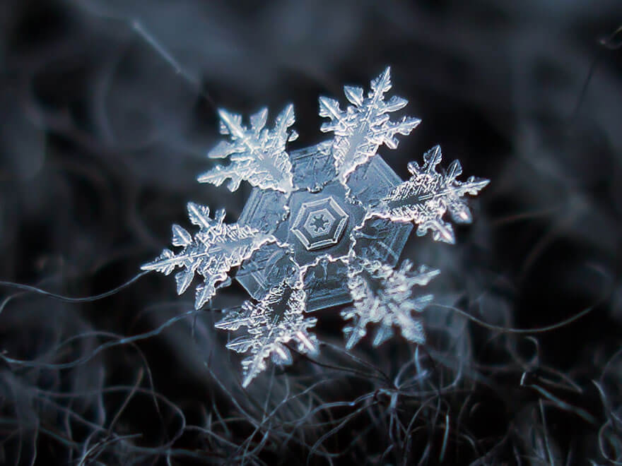 snowflakes photography 5 (1)