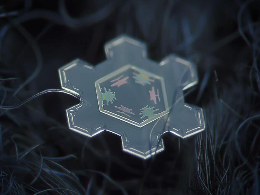 snowflakes photography 7 (1)