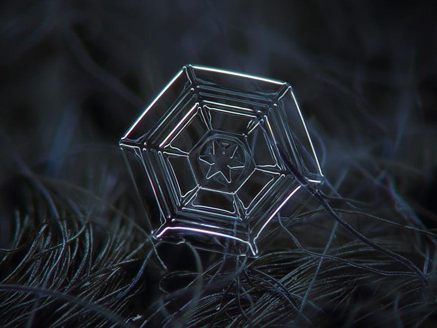 alexey kljatov snowflakes photography 9 (1)