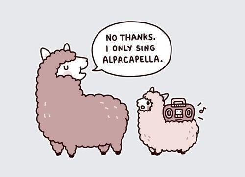 Alpaca Memes 1 (1)