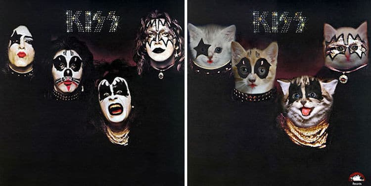 ablum covers replaced with kittens 10 (1)