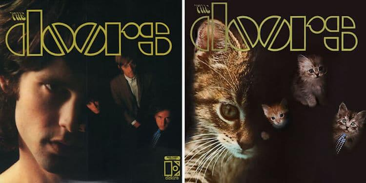 ablum covers replaced with kittens 16 (1)