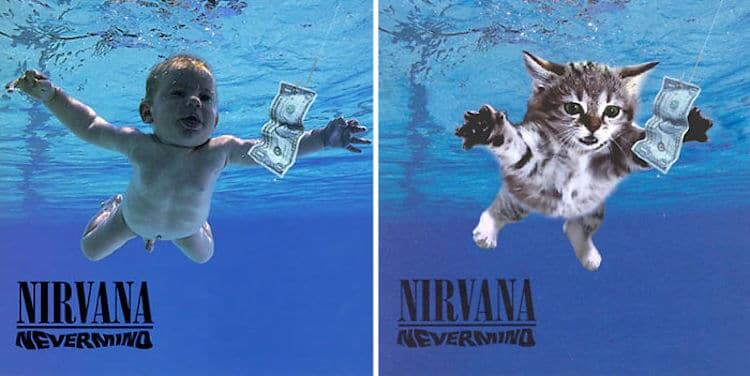 ablum covers replaced with kittens 2 (1)