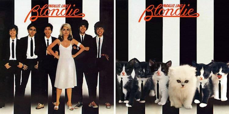 ablum covers replaced with kittens 6 (1)
