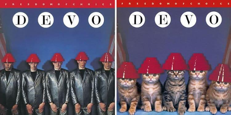 ablum covers replaced with kittens 7 (1)