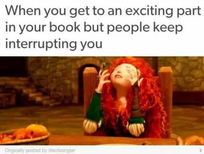 book lover memes 2 (1)