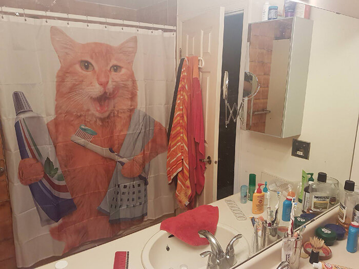 lol shower curtains 11 (1)