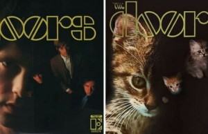 kittens album covers feat (1)