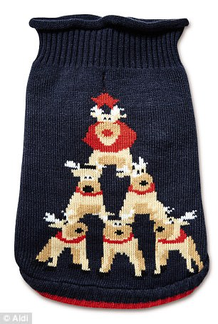 matching Christmas jumpers for pets and owners 2 (1)
