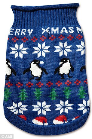matching Christmas jumpers for pets and owners 6 (1)