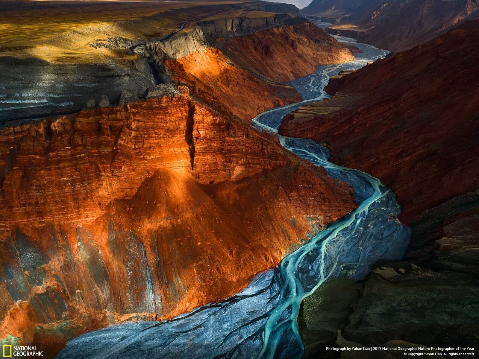 national geographic nature photographer of the year winners 6 (1)
