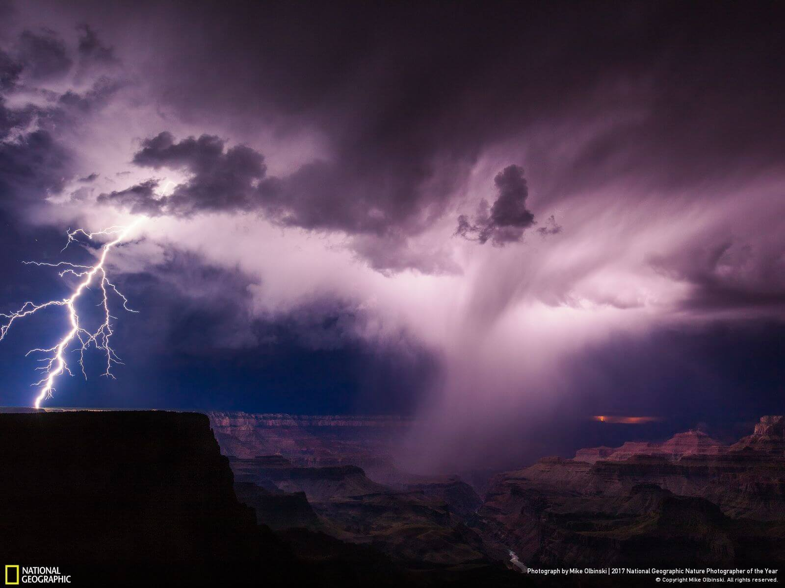 national geographic nature photographer of the year winners 8 (1)